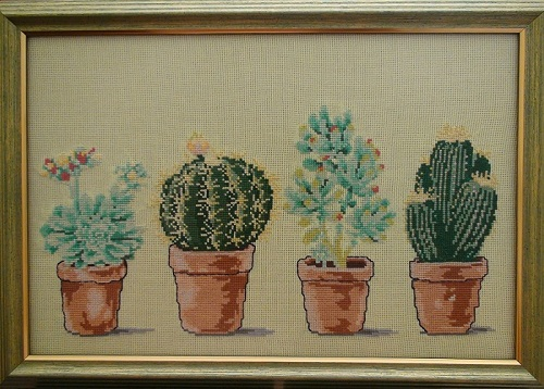 Cactuses-Framed picture