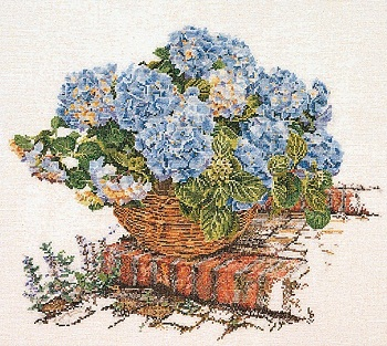 Blue Hydrangea in basket by Thea Gouverneur