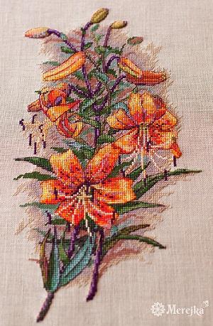 Vintage lillies,K-90, by Merejka