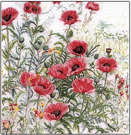 Pink Poppies by Thea Gouverneur