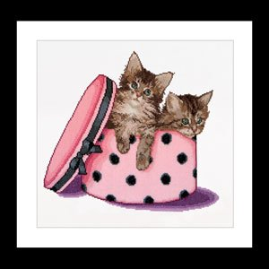 Kitten twins by Thea Gouverneur