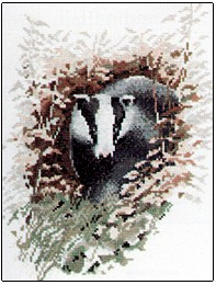 Badger by John Stubbs - Wildlife Collection