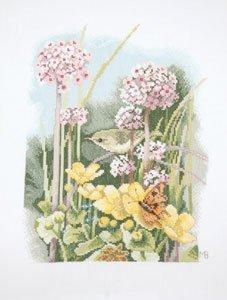 Little Bird by Lanarte