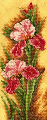 Irises by Lanarte