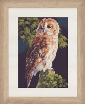 Owl by Lanarte