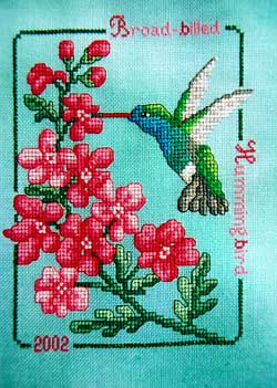 Broad-Billed Hummingbird 2002 by Crossed Wing Collection