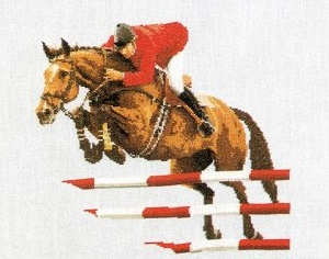 Horse jumping by Thea Gouverneur
