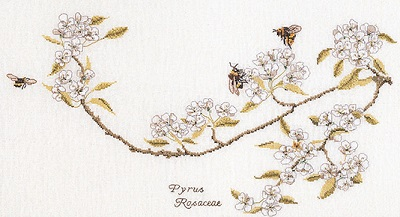 Bees and blossoms by Thea Gouverneur