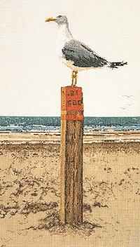 Seagull Outlook by Thea Gouverneur
