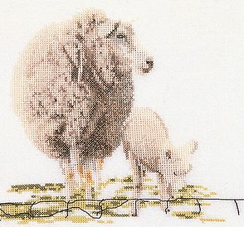 Sheep by Thea Gouverneur