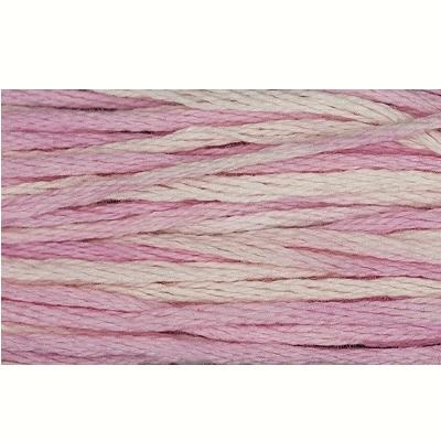 Weeks DYE Works - 1138 Sophia's Pink