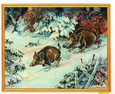 Wild boar by Eva Rosenstand