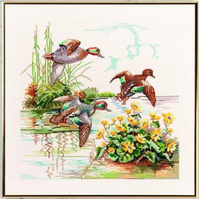 Wild ducks by Eva Rosenstand