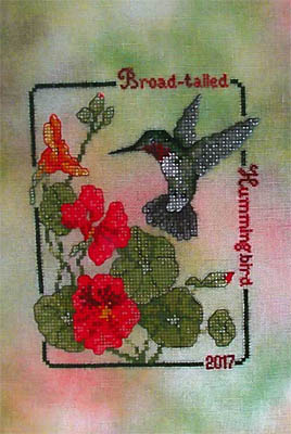 Broad Tailed Hummingbird (2017Commemorative) by Crossed Wing Collection