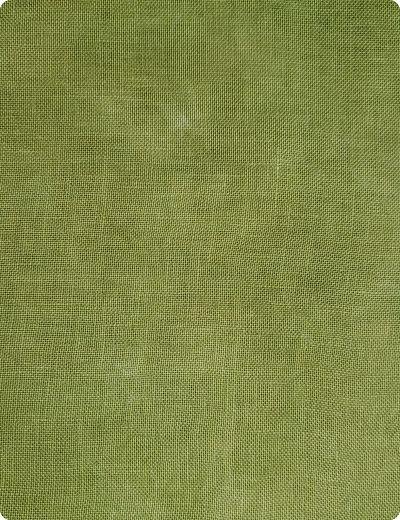 Wrinkled Fabrics Froggy Pond