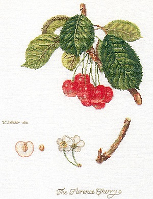 Cherries by Thea Gouverneur