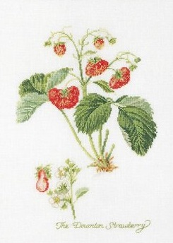 Strawberry by Thea Gouverneur