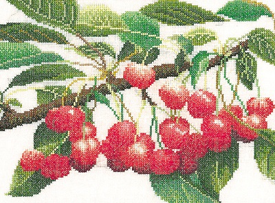 Branch Of Cherries by Thea Gouverneur