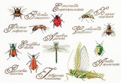 Insects by Thea Gouverneur