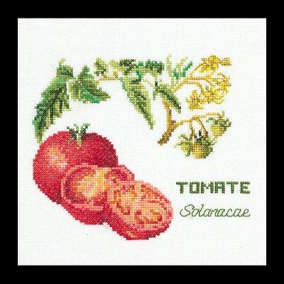 Tomato by Thea Gouverneur