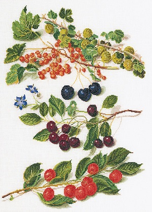 Springs of berries by Thea Gouverneur