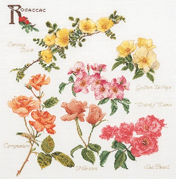 Rose branches by Thea Gouverneur