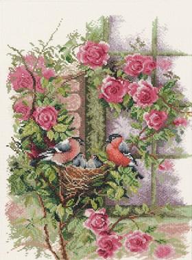 Nesting birds in rambler rose by Lanarte