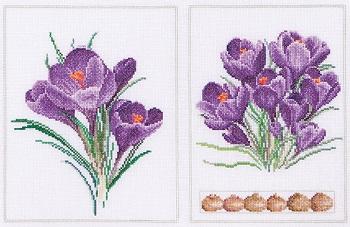 Purple flowers by Thea Gouverneur