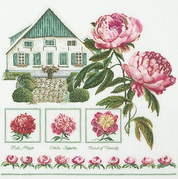Peony by Thea Gouverneur