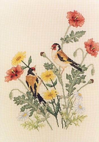 Crossed Wing Collection European Goldfinches