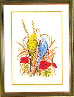 Parakeets by Eva Rosenstand