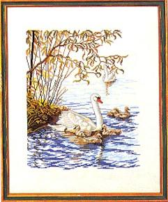 Mother swan by Eva Rosenstand