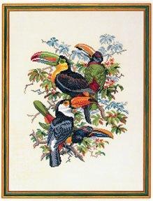 Toucan by Eva Rosenstand