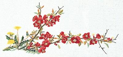 Floral bloom by Thea Gouverneur