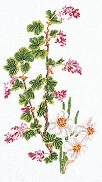 Floral,GOK824,Thea Gouverneur