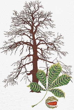 Chestnut tree by Thea Gouverneur