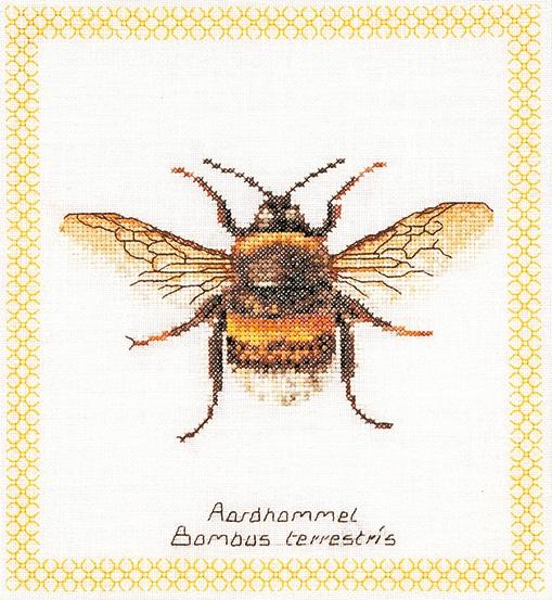 Thea Gouverneur GOK301 Bee