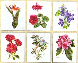 Flowers IV- 6 Designs,GOK3081,Thea Gouverneur