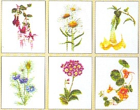 Flowers III - 6 Designs,GOK3084,Thea Gouverneur