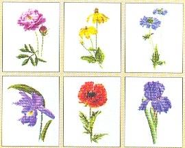 Flowers I - 6 Designs,GOK3085,Thea Gouverneur