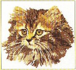 Cat,GOK930,Thea Gouverneur