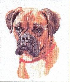 Dog portrait,GOK933,Thea Gouverneur