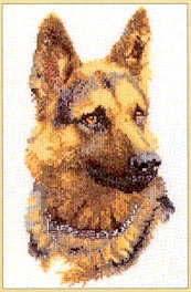 German Shephard,GOK934,Thea Gouverneur