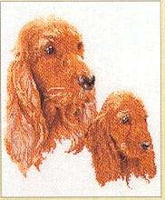 Spaniel,GOK926,Thea Gouverneur