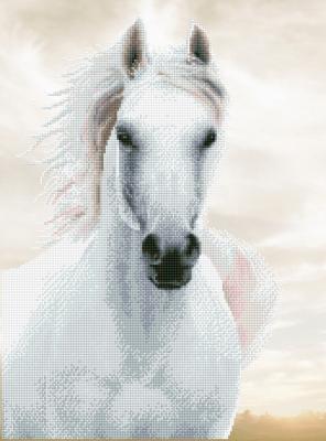 Imperial stallion by Diamond Dotz