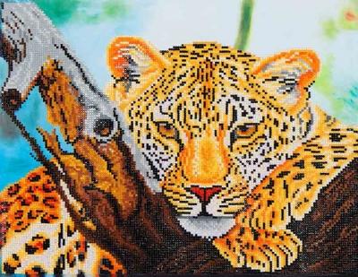 Leopard Look by Diamond Dotz