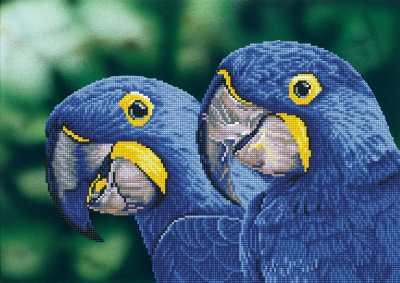 Blue Hyacinth Macaws by Diamond Dotz