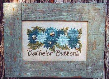 Bachelor buttons by Samsarah Design Studio