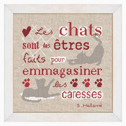 Chats et Caresses by Lili Points