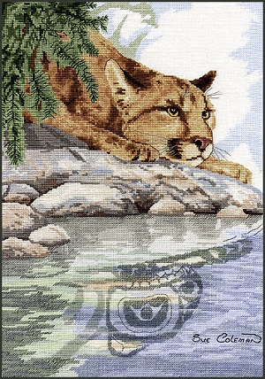 Cougar reflection by Stitching Studio